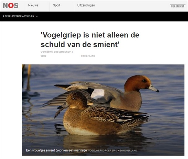 NOS_vogelgriep is niet alleen de schuld van de smient