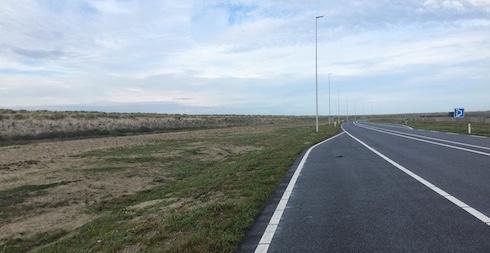 Vluchtstrook met kadaver op de Maasvlakte, najaar 2015