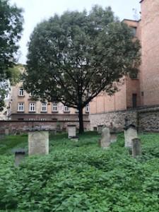 begraafplaats_remuh-synagoge