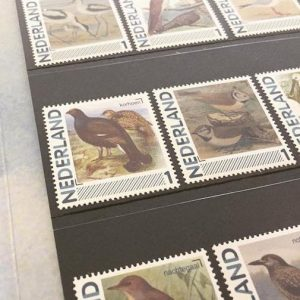 dutch birds_postzegels